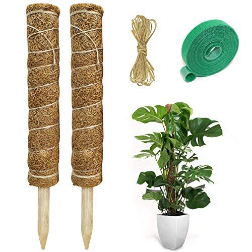 Hongyans 2 Stück Pflanzstab Kokos Moosstab für Pflanzen Pflanzstab Rankstab Monstera Rankhilfe Kokosstab für Kletterpflanzen mit 1 Rolle Klett Kabelbinder und 1,5 m Jute Schnur (40 cm)