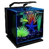 GloFish Betta Aquarium Kit 3 Gallons, Includes LED Lighting and Filter