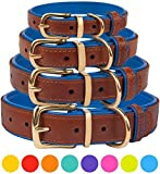 CollarDirect Leather Dog Collar Brass Buckle Soft Padded Puppy Small Medium Large Red Pink Blue Green Purple Yellow (Neck Fit 15'-17', Navy Blue)