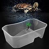 Duokon Pequeño Tanque de Peces Abierto de plástico Transparente con Sol Que domina la Plataforma Acuario Tortuga para Tortuga Reptil(Blanco)