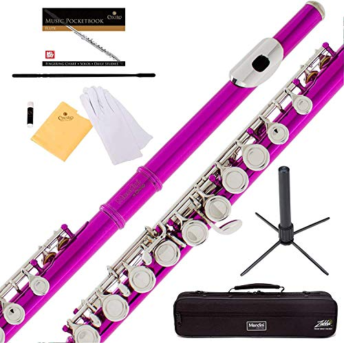 Mendini Closed Hole C Flute with Stand, 1 Year Warranty, Case, Cleaning Rod, Cloth, Joint Grease, and Gloves (Fuschia)