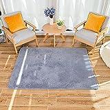 HEXIN alfombras pie de Cama,Alfombras de Moderna para Salon de Estar de Pila Gruesa No se desprenden y Alfombra de Dormitorio; Alfombra Peluda Hágase cómodo (Azul grisáceo, 80x120cm)
