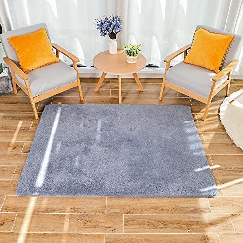 HEXIN alfombras pie de Cama,Alfombras de Moderna para Salon de Estar de Pila Gruesa No se desprenden y Alfombra de Dormitorio; Alfombra Peluda Hágase cómodo (Azul grisáceo, 60x90cm)