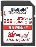 BigBuild Technology Tarjeta de memoria UHS-I U3 de 256 GB de 95 MB/s para Canon EOS 1200D, 1300D, 200D, 4000D, 5DS, 5DS R, 77D, 800D, 80D, 9000D, 5D Mark IV, 6D Mark II, M100, M3, M5, M50, M6, R.