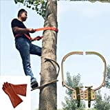 YFJL Non-Slip Foot Buckle Wooden Pole Foot Buckle Thicken Foot Buckle Climbing Tree Spikes for Hunting Observation, Picking Fruit, Coconut, Give a Pair of Insulated Gloves,350model