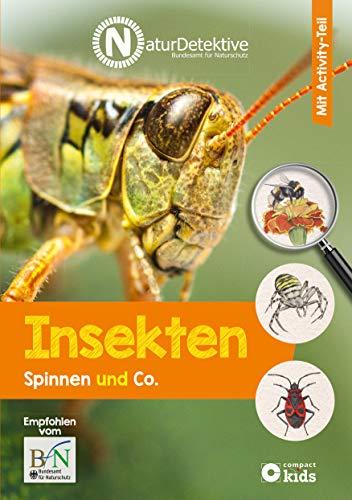 Insekten, Spinnen und Co. (Naturdetektive: Wissen und Beschäftigung für kleine Naturforscher ab 6 Jahren)