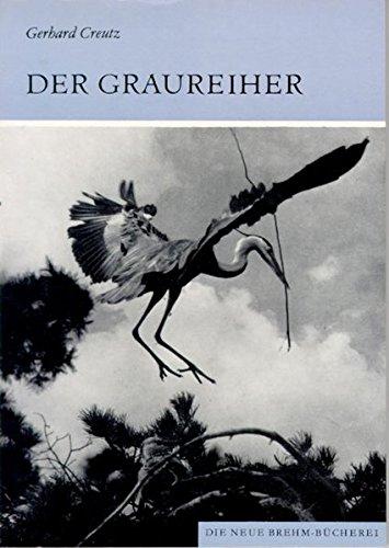 GRAUREIHER