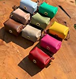bulpet Dog Faux Leather Poop Bag Holder/Pet Waste Bag Dispenser/Key Chain and Leash Attachment/Dog Gift (Beige)