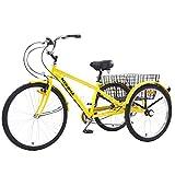 WYFC 24inch 3 Ruote della Bicicletta per...