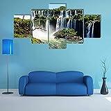 QQQAA Iguazu fällt Blick aus Argentinien Vlies