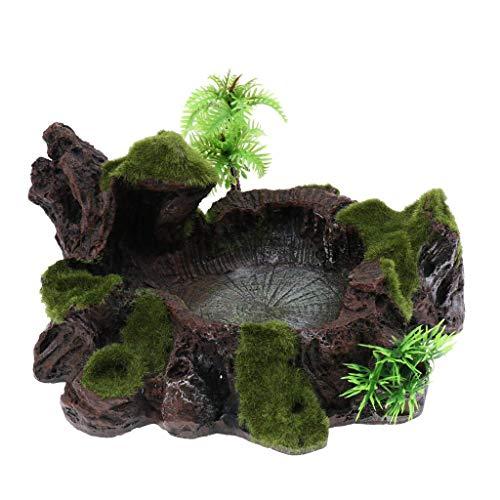 Sitrda 1 Stück ungiftiges Harz Pflanzen-Moos Dekorative Reptilien-Futterschüssel Futter Wasserschale Schildkröte Futter Schale für Terrarium Reptilienbecken Aquarium Ornament