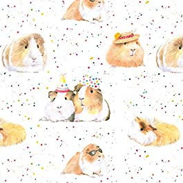 Guinea Pig Party Gift Wrapping Paper, 2 Sheets and Tags