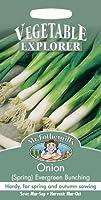 MFVX 英国ミスターフォザーギルズシード VEGETABLE EXPLORER Onion (Spring) Evergreen Bunching オニオン(スプリング)・エバーグリーン・バンチング
