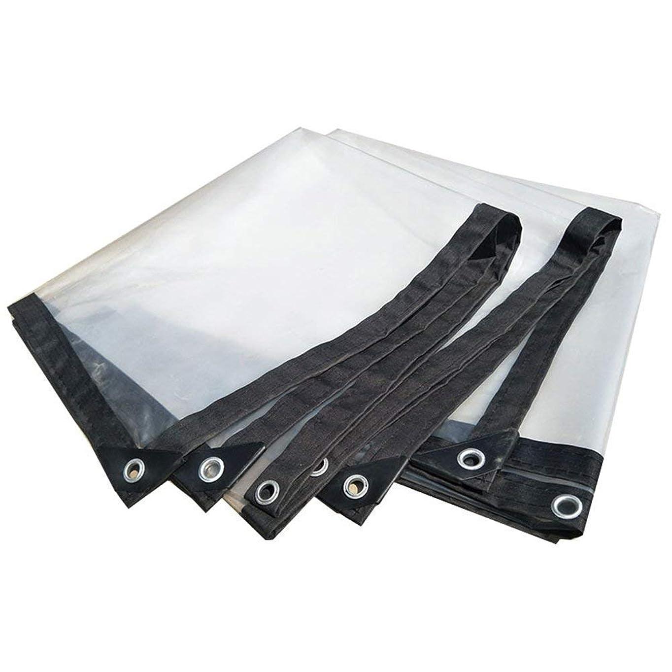 バラバラにする精緻化カセットNwn 明確な防水シート防水頑丈なカバー防水プラスチック布フィルムアンチエイジング絶縁PEタープ、カスタマイズ可能な白 (サイズ さいず : 4X10m)