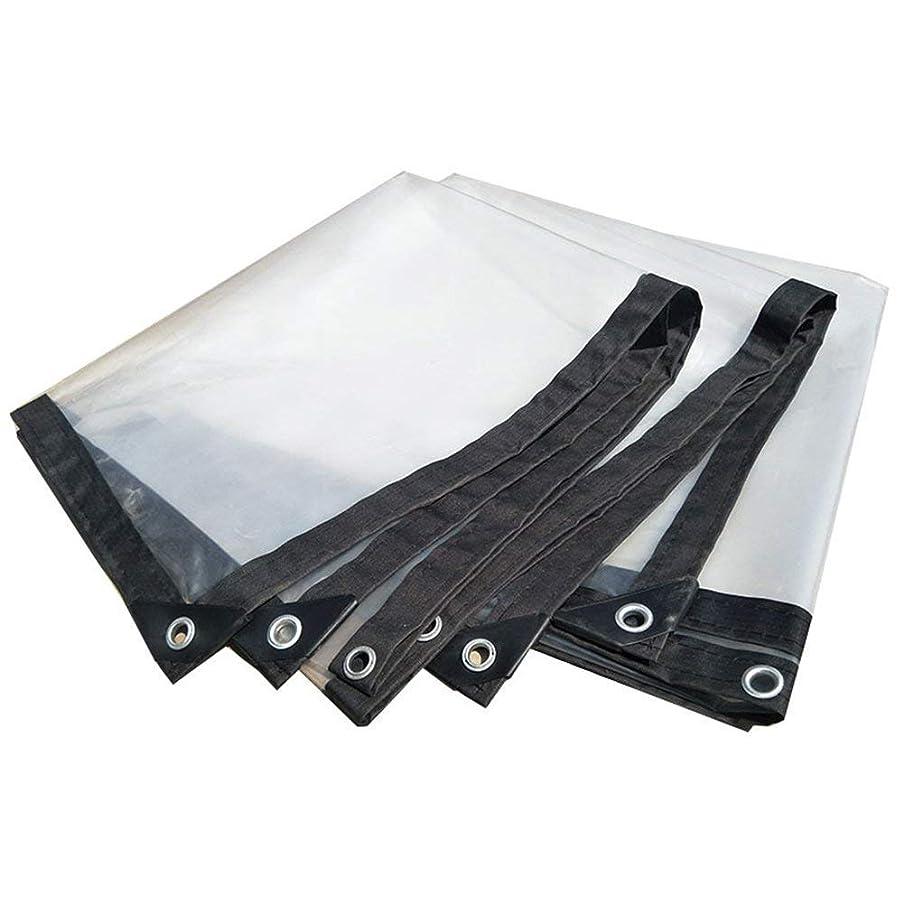 ぶら下がる高尚な傾いたNwn 明確な防水シート防水頑丈なカバー防水プラスチック布フィルムアンチエイジング絶縁PEタープ、カスタマイズ可能な白 (サイズ さいず : 4X4m)
