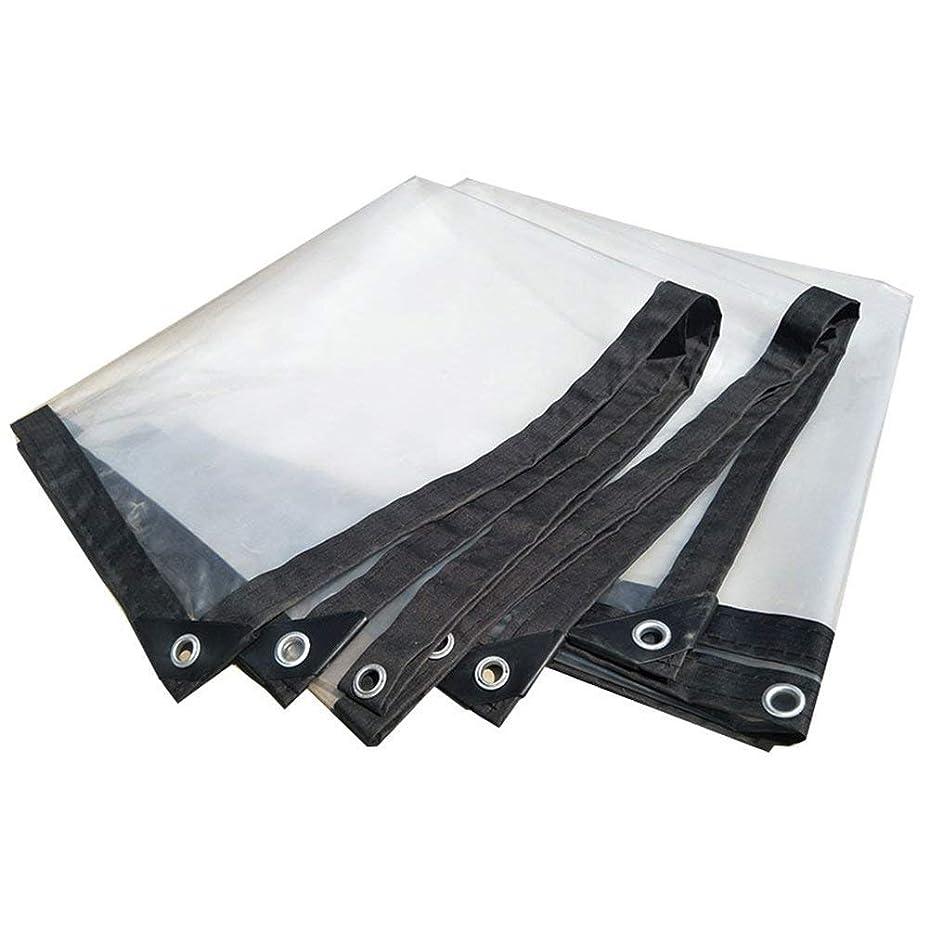 みすぼらしい検証雨のNwn 明確な防水シート防水頑丈なカバー防水プラスチック布フィルムアンチエイジング絶縁PEタープ、カスタマイズ可能な白 (サイズ さいず : 2X3m)