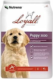 Loyall Puppy 40lb
