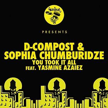 You Took It All feat. Yasmine Azaiez