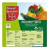 Bayer Aliette WG Fungicide, 45g