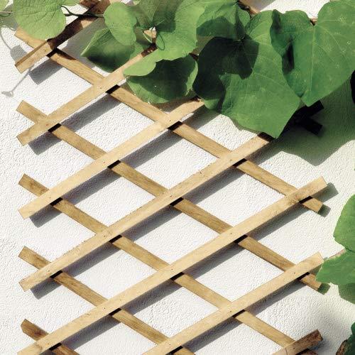 bellissa Scherengitter ausziehbar - Rankgitter Holz-Spalier oder Scherenspalier Rankhilfe im Garten (270x45cm, Natur)
