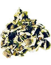 Mierikswortelboom -Moringa oleifera- 1000 zaden Verse directe import