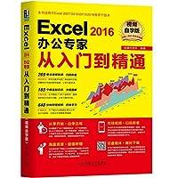 Excel2016办公专家从入门到精通(视频自学版)
