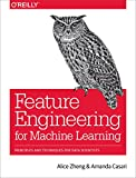 Feature Engineering for Machine Learning Models: Principles and Techniques for Data Scientists