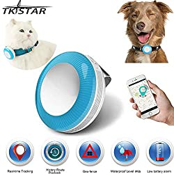 dog collar trackers