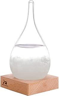 BLUESTORM Storm Glass Weather Predictor Storm Glass Barometer Forecaster Creative Crystal Glass Decorative Bottles Desktop Drops Craft Weather Station Barometer Scientific Gift (Small)