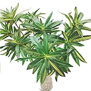WUAHEIE 75 cm Artificial Tropical Plants, Artificial Coconut Trees, Large Palm Trees, Silk Plants, Artificial Bamboo, for Home Garden Decoration