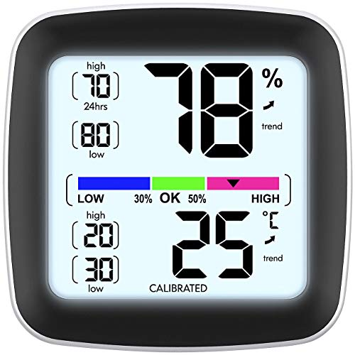 infactory Kfz Thermometer: Digitales Präzisions-Thermo-/Hygrometer mit LCD-Display, kalibrierbar (Raumthermometer mit Hygrometer)