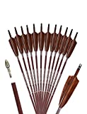 PANDARUS Archery 31-Inch Carbon Hunting Arrows, 4-Inch Turkey Feather Fletching with Replaceable Points, Targeting Practice Arrows Spine 500 for Recurve & Traditional Bows (12 Pack)