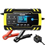 Directtyteam Car Battery Charger Lntelligent 8A 12V/4A 24V car battery charger Charges, Maintains and Reconditions Car and Motorcycle Batteries (Yellow)