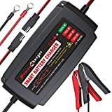 Best 12v Battery Chargers - BMK 12V 5Amp Fully Automatic Battery Charger 4-Stage Review