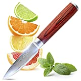 Damascus Paring Knife, 3.5 inch Japanese VG-10 Stainless Steel Super Sharp Small Kitchen Knives With Pakkawood Handle