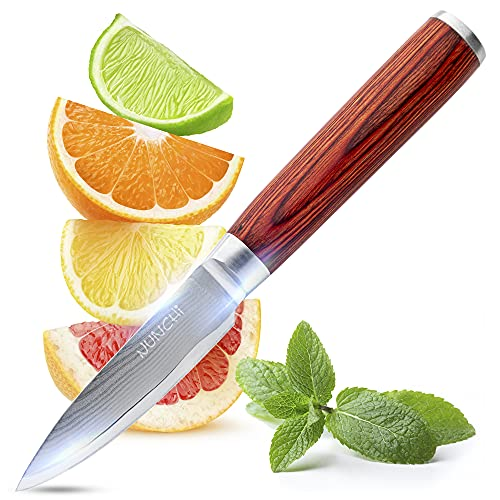 Damascus paring knife, 3.5 inch, Traditional Japanese Quality VG-10 Stainless Steel Super Sharp Small kitchen knife with pakkawood handle