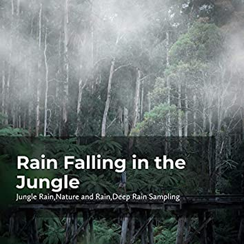 Rain Falling in the Jungle