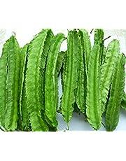 Semillas de frijol alado Semillas de frijol especial Semillas de frijol Frijol Caupí Judías verdes de algarroba Semillas de hortalizas 500g