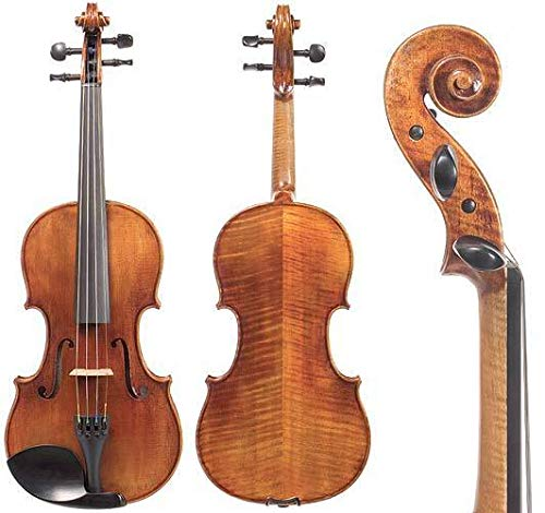 D Z Strad N201 Violin with bow and case