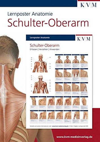 Lernposter Anatomie: Region Schulter - Oberarm (Die Muskelbuch-Reihe)