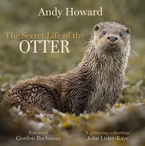 The Secret Life of the Otter
