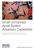 Small Unmanned Aerial System Adversary Capabilities