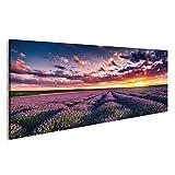 islandburner Bild Bilder auf Leinwand Lavendelfeld Provence