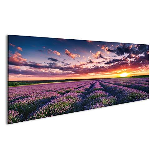 islandburner Bild Bilder auf Leinwand Lavendelfeld Provence Lavendel Poster, Leinwandbild, Wandbilder