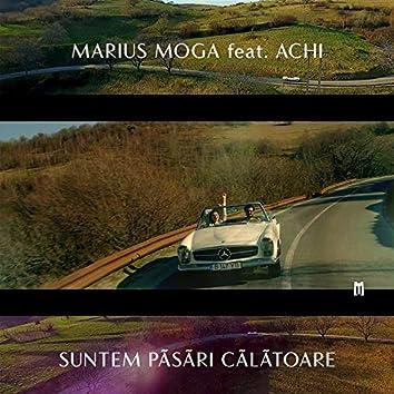 Suntem Pasari Calatoare (feat. Achi)