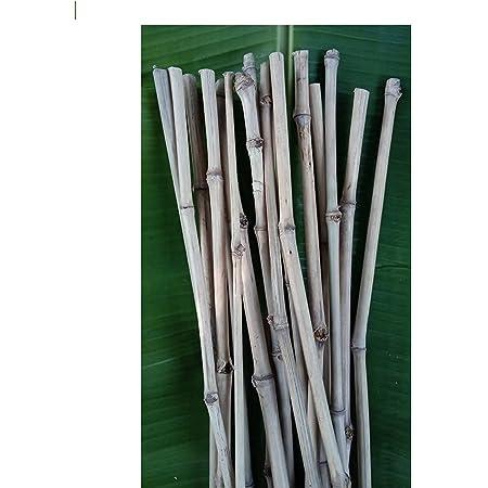 Kabi Aggro Bamboo Sticks for Plants Support 2.3 feet / 70 Cm 20 pcs