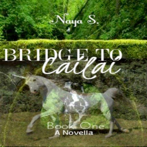 Bridge to Cailai: Book One audiobook cover art