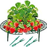 HEZHU 10x Frucht-Reifer Set Erdbeerreifer Erdbeerstütze Schneckenschutz Pflanzenhalter + Pikier-Set 2 Bestehend aus Pikierstab und Pikiergabel - zum Versetzen von Setzlingen