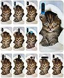 CoverHeld Hülle für Apple iPhone 4 / 4s Handyhülle Design 1003 Katze Katzen Baby Braun Blau Weiß aus flexiblem Silikon SchutzHülle Softcase HandyCover Hülle für Apple iPhone 4 / 4s