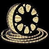 Forever Speed 30M Tubo Luminoso a LED,Flessibile a LED Tubo per Esterna Interna Bianco Caldo, Fiabe LED Tubo Luminoso per Natale,Matrimonio,Vacanze,Giardino,Decorazione del Tetto e Illuminazione IP65